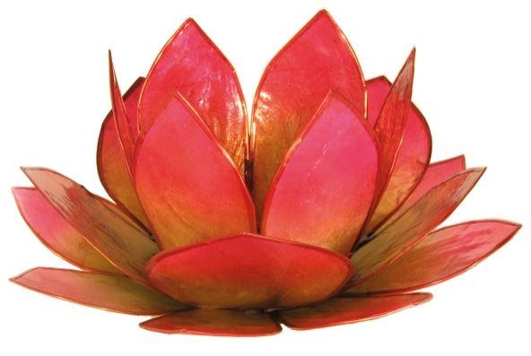 Photophore Lotus Vert et Rose [14cm/DG]